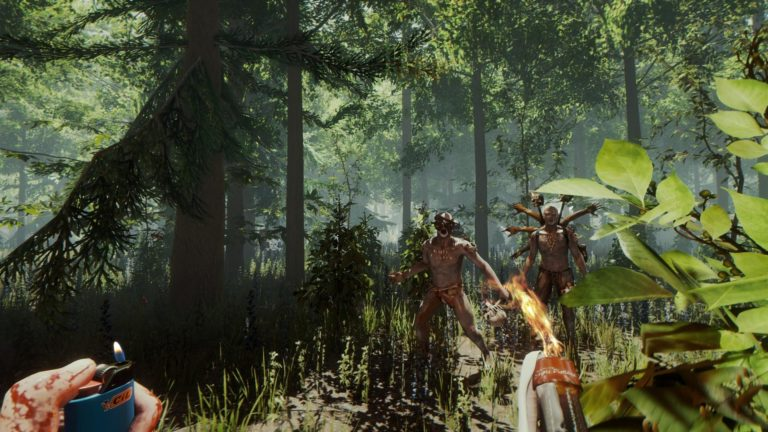 Обложка игры The forest